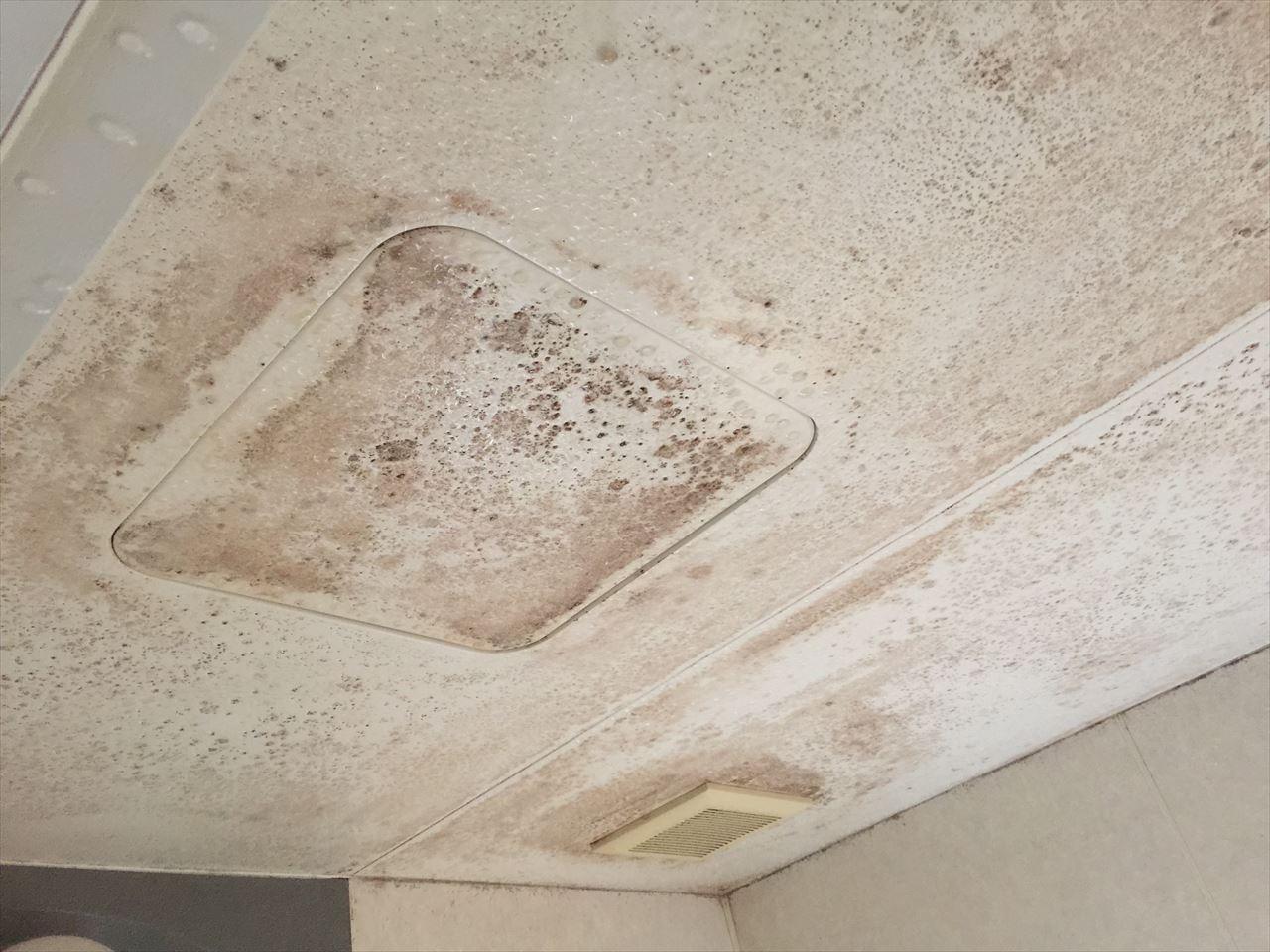南区T邸お風呂場天井汚れ落としの施工前写真その1